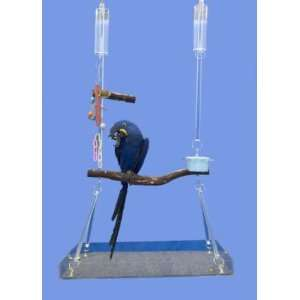 Open Hanging Bird Cage by Crystal Flight