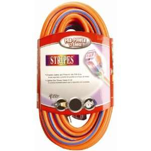 Cable 02549 3V 100 Foot 12/3 Neon Outdoor Extension Cord, Orange/Blue
