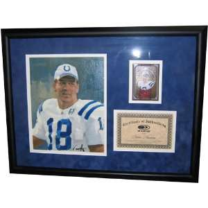 NFL Football Artwork   Donruss Gridiron Kings   Peyton