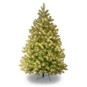 Real Feel Downswept Douglas Fir Tree with Clear Lights   4