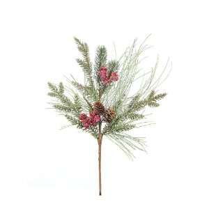 Club Pack of 12 Eco Country Pine, Cedar & Red Berry